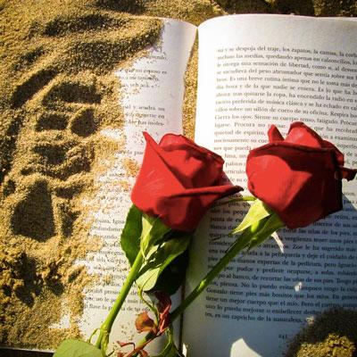Sant Jordi, Llibre i rosa, Estiu, 2020