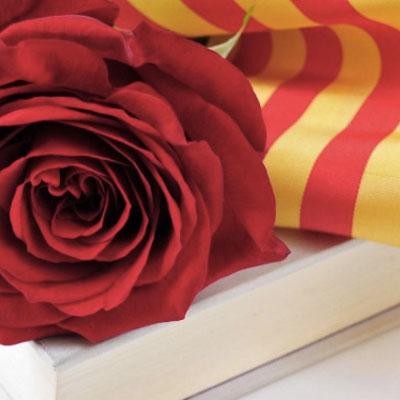 Dia del Llibre i la Rosa, Sant Jordi, Girona, 2020