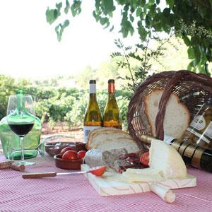 Tast de raïms entre vinyes - Celler Masroig