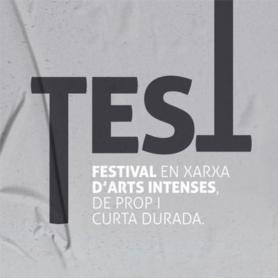Festival Test