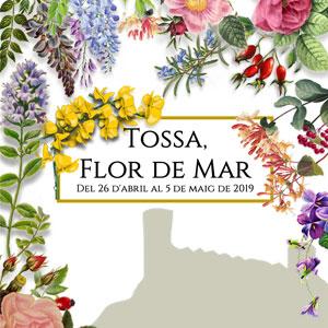 Tossa, Flor de Mar, Tossa de Mar, 2019