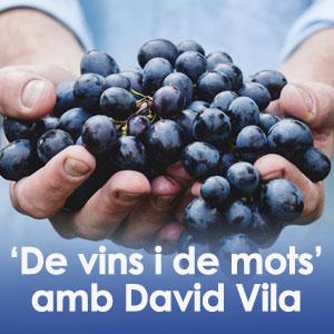 De vins i de mots