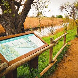 Visita guiada 'Descobreix l'entorn natural de Tamarit'