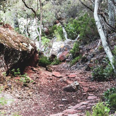 Visites guiades a l'entorn del Castell Monestir d'Escornalbou
