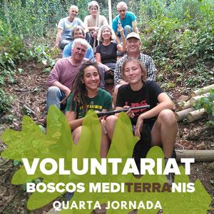 Voluntariat Boscos Mediterranis - Dies 16 i 17 de novembre Bosc de Poblet 2019
