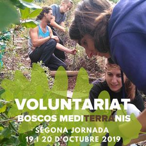 Voluntariat Boscos Mediterranis - Dies 19 i 20 octubre Bosc de Poblet 2019