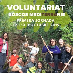 Voluntariat Boscos Mediterranis - Dies 12 i 13 octubre Bosc de Poblet 2019