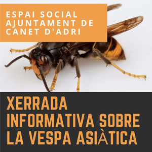 Xerrada informativa vespa asiàtica a Canet d'Adri
