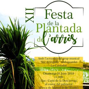 XII Festa de la plantada de l'arròs - L'Ampolla 2019
