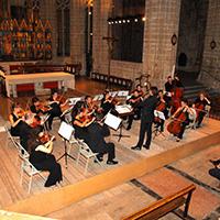 OCTO - Orquestra de Cambra de Tortosa
