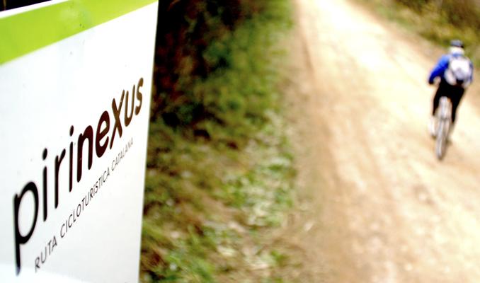 Ruta Pirinexus