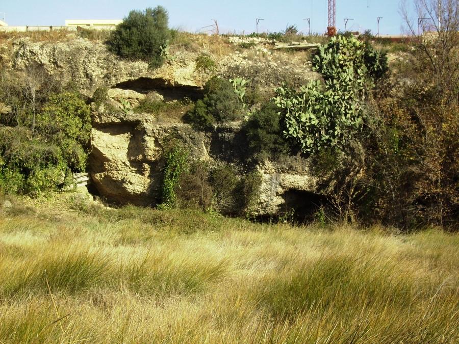 Les coves del Rocall i aiguamolls de Soldevila