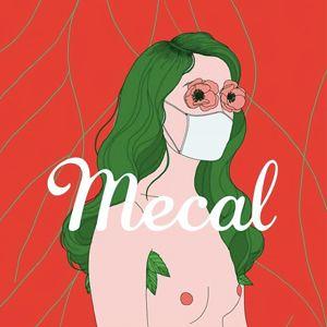 Mecal. Festival Internacional de Curtmetratges i Animació de Barcelona, Online, 2020