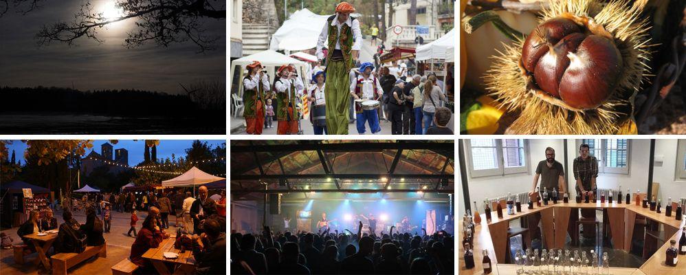 Formes de celebrar la festa de la Castanyada al centre de Catalunya