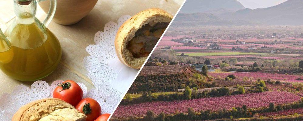 Festa de la Clotxa de la Ribera d'Ebre