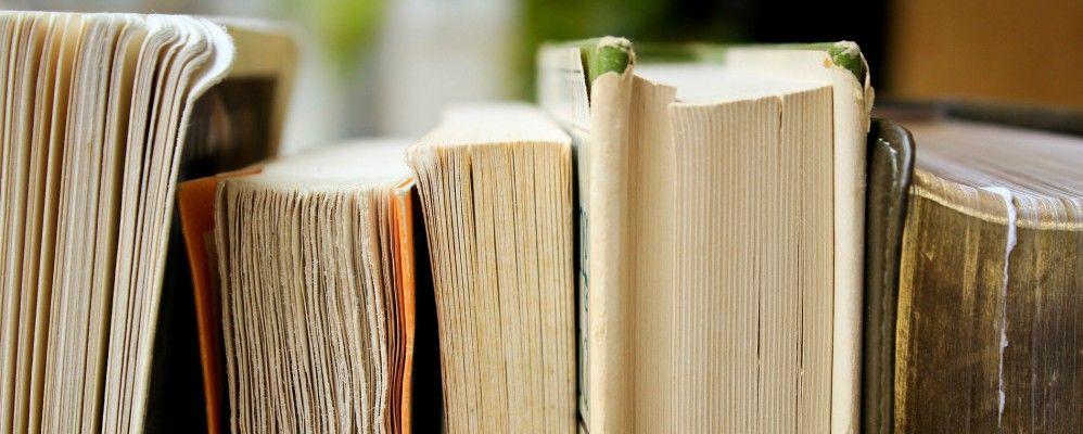 editorial Fonoll, Juneda, llibre, lectura, 2017, març, Miquel Capdevila, periodista
