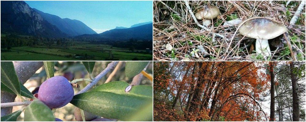 instagram, fotografies, cap de setmana, octubre, Surtdecasa Ponent, 2016
