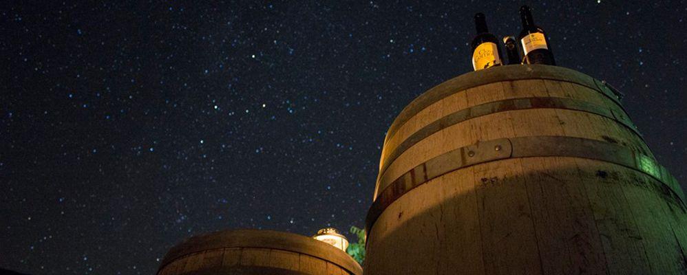 Astronomia i vins