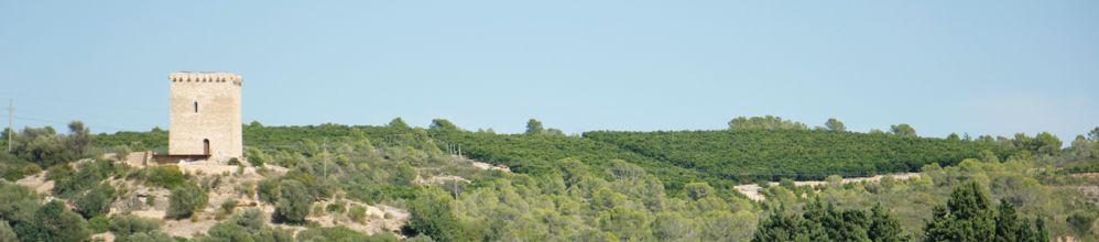 La Torre de Campredó