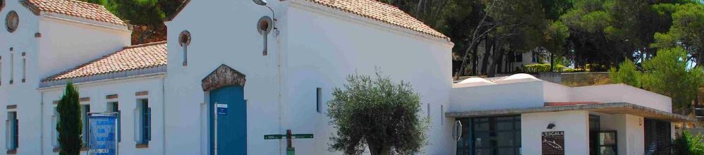 Museu de l'anxova i de la sal (MASLE)