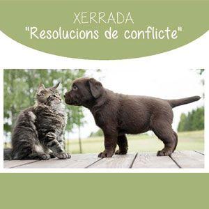 Xerrada 'Resolucions de conflicte' - Biblioteca de Gandesa 2019