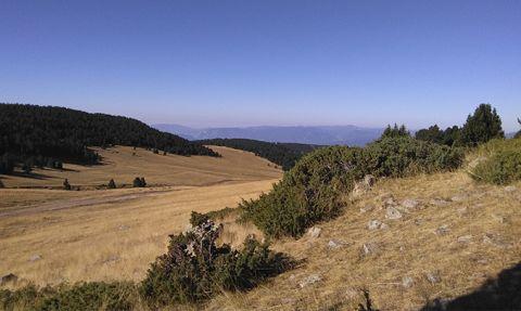 Imatge d'un dels camins de llibertat que hi ha al Pirineu