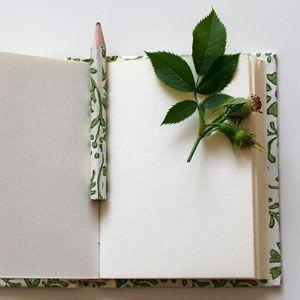 Quadern de camp