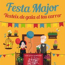 Festa Major Sant Esteve Sesrovires