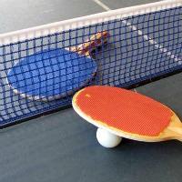 Torneig d'Estiu de Tennis Taula